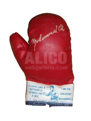 Youth Size Red Boxing Gloves