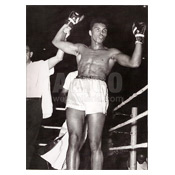 Cassius Clay / Jim Robinson Wire Photo