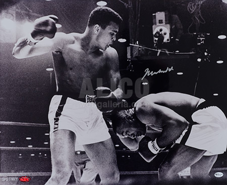 Cassius Clay / Sonny Liston Autographed 16 x 20