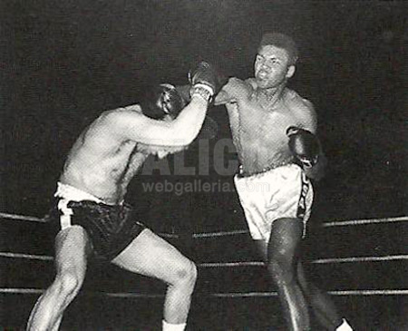 Cassius Clay / Lamar Clark Black/White Press Photo