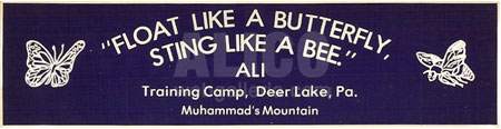 Muhammad Ali Training Camp Bumper Sticker